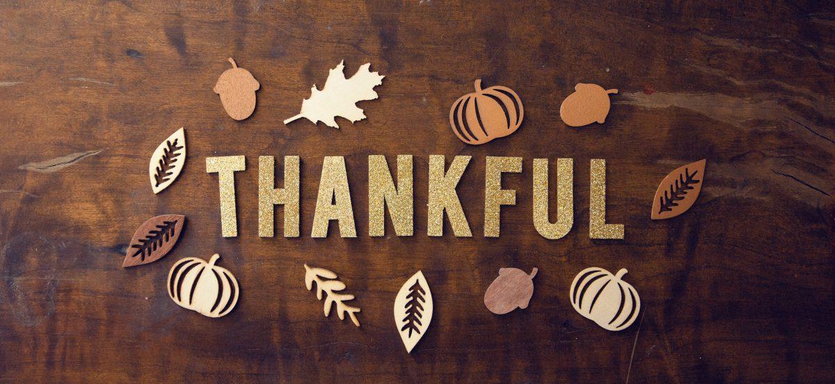 12 Reasons to be Grateful This Festive Season